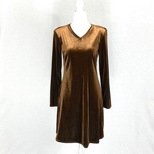 Vintage Rusty Brown Velvet Dress